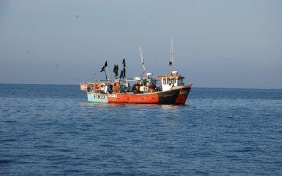 Gower seascape assessment